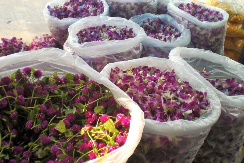 Bangkok mit Kindern Blumenmarkt