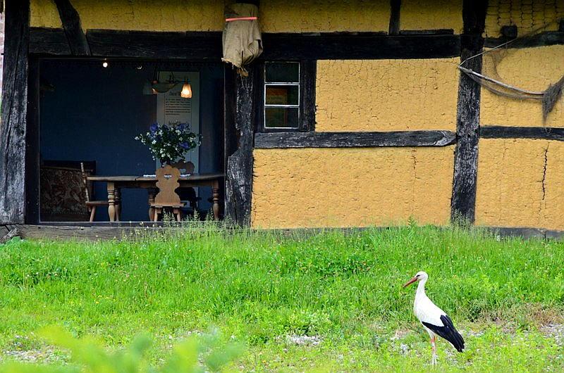 Ecomusee Storch Bauernhof