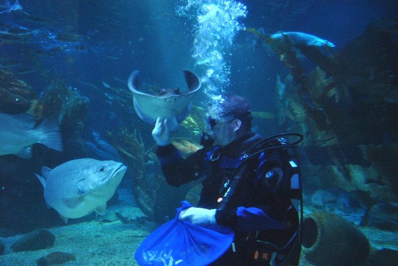 Kurzurlaub mit Kindern: Berlin Sea Life