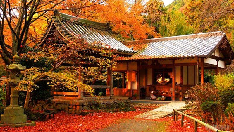 Traumreiseziele: Kyoto