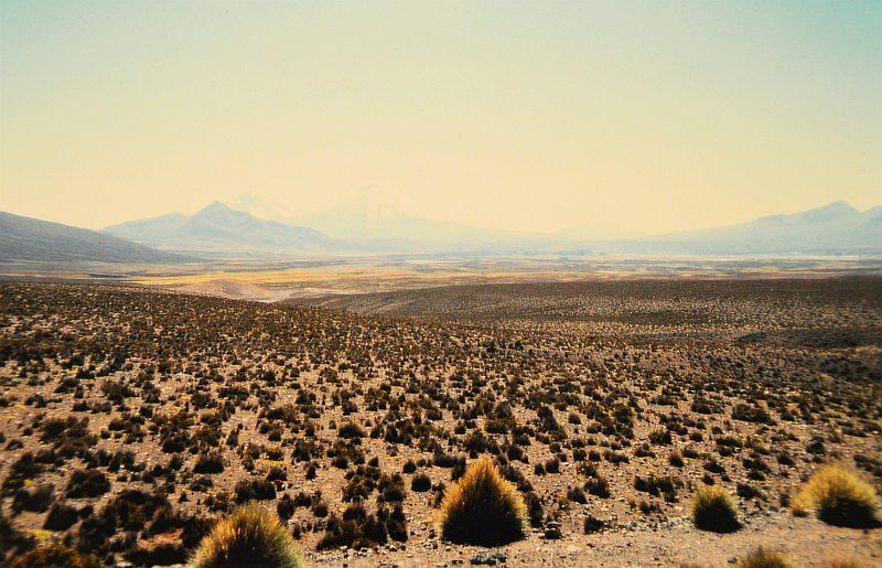 Altiplano 3 Anden Nordchile