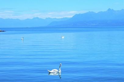 Auszeit am See: Wo ist es am schönsten? *Blogparade*