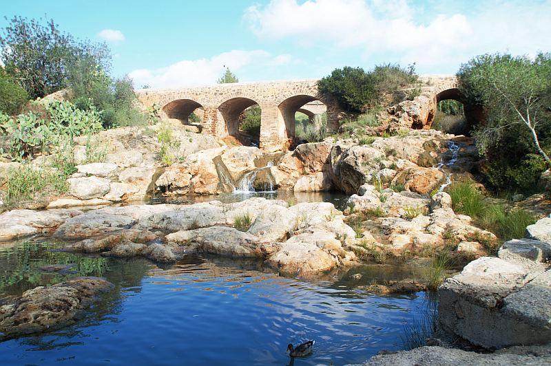 Ibiza mit Kindern