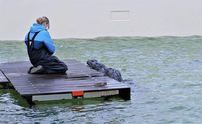 Zeeland mit Kindern Deltapark